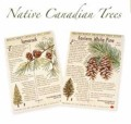 Native Canadian Tree Seeds